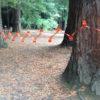 Click - Temporary Fencing - Ceemee
